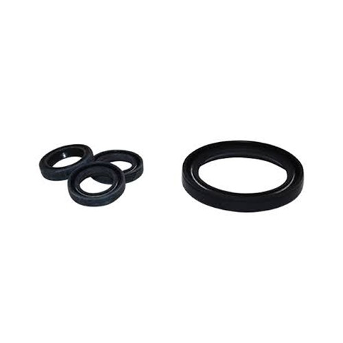 RCV Series Pump Oil Seal Kit
