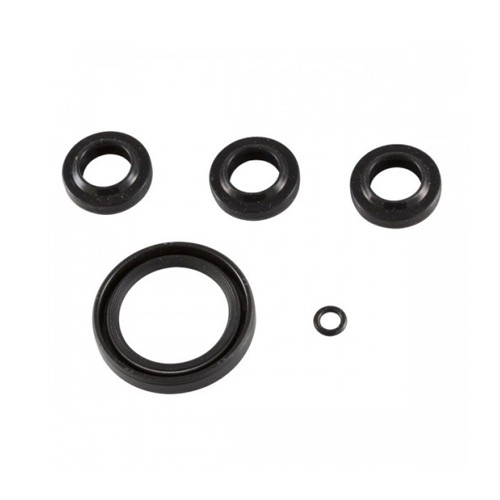 SJV Series Pump Oil Seals